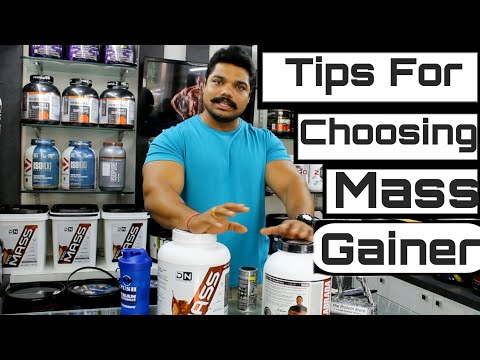How To Choose The Right Mass Gainer (The Protein Store Pune)