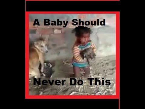 Indian Baby with Dog