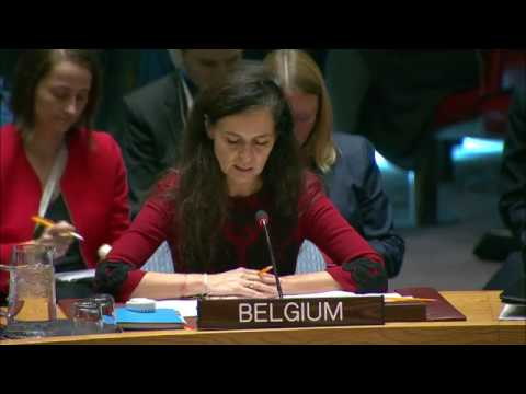 Security Council Renews Mandate for Panel of Experts Sanctions Regime on