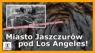 Miasto Jaszczurów pod Los Angeles!
