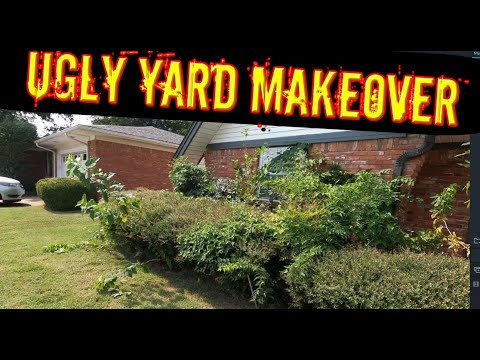 , title : 'UGLY YARD BEFORE AND AFTER - OVERGROWN LANDSCAPING BEFORE AND AFTER  - Fixing overgrown landscaping