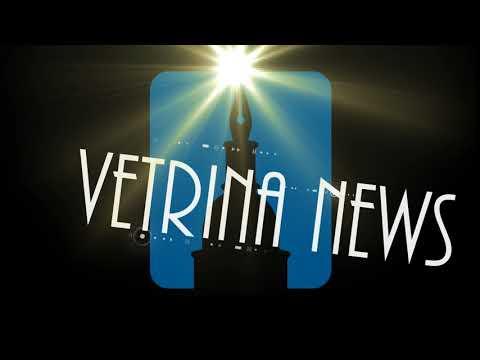 VETRINA NEWS del 19.03.2018 TG di Buongiorno Novara