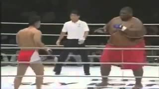 Спортивный прикол на ринге - Сумо против Бокса, смешное видео