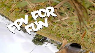 FPV for Fun #02