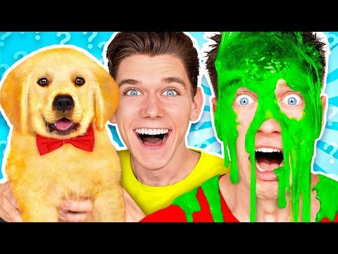 Dogs Pick our Mystery Slime Challenge! Learn How To Make the Best DIY Funny Switch Up Oobleck Game