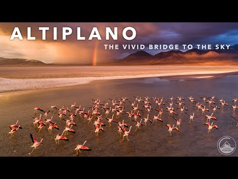 סרטון נפלא של רמת אלטיפלאנו בדרום אמריקה באיכות 4K