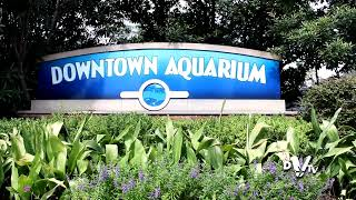 Downtown Aquarium  Houston, Texas    YouTube
