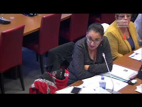 Question au Haut Commissaire à la Réforme des Retraites, Monsieur Jean-Paul Delevoye