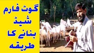 goat farming in nepal pdf - TH-Clip
