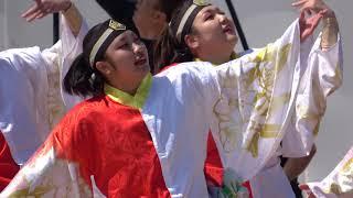 南NA魅@2018 YOSAKOIかぬまフェスティバル