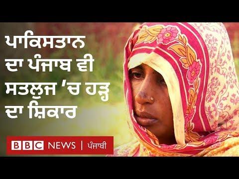 ਪਾਕਿਸਤਾਨ ਦੇ ਪੰਜਾਬ 'ਚ ਵੀ ਸਤਲੁਜ 'ਚ ਹੜ੍ਹ ਦਾ ਕਹਿਰ I BBC NEWS PUNJABI