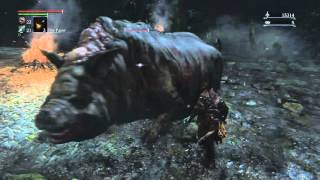 Bloodborne Expert Walkthrough #15: Shadows of Yharnam Defeated!