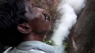 Honey Hunting in the Nilgiris