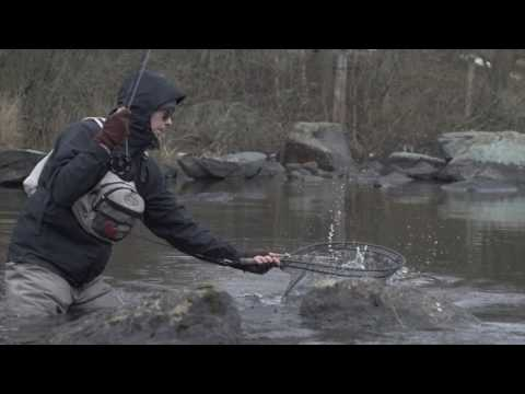 Going for the mayfly trout