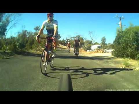 В Австралии кенгуру перепрыгнул через мчавшегося велосипедиста