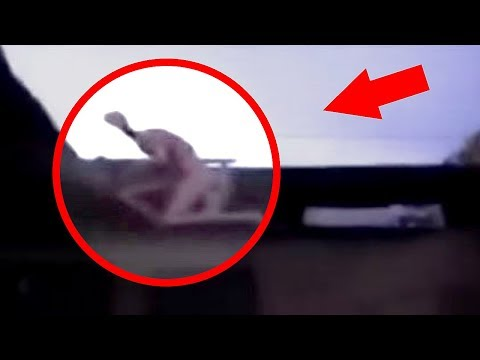 5 Most Mysterious & Unidentified Creatures Caught On Camera