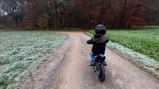 Pocket Bike - 6Jähriger auf  Actionbikes - Mini Elektro Crossbike Gepard 500 Watt 36V