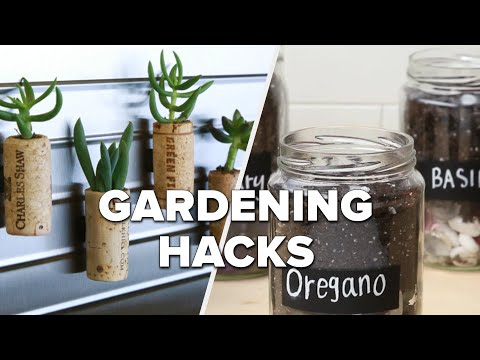 Hacks for Effortless Gardening