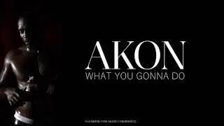 Akon - What You gonna Do