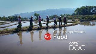 China's Mega Projects: Food