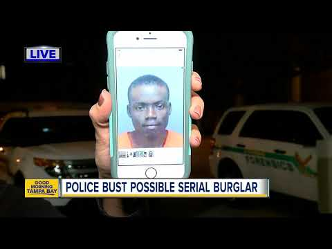 Suspect breaks into St. Pete home through doggie door
