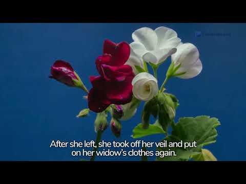 Genesis 38: Judah and Tamar | Bible Story (2020)