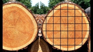 How To Make Lumber With A Sawmill