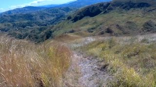 This is one of the ways to descend from Mt. Williams. It's a wilderness trail with magnificent scenery.