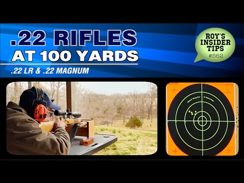 .22 Rifles At 100 Yards