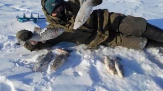 Зимняя рыбалка в самарской области платная