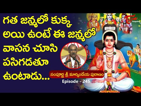 Markandeya Puranam #245 | గత జన్మలో కుక్క అయిఉంటే ఈజన�