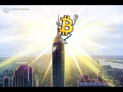Bitcoin tranzaction explorer
