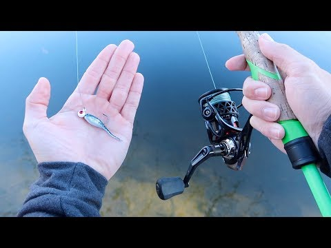 Catch 15x MORE Fish This Winter (Bass Fishing Tips)