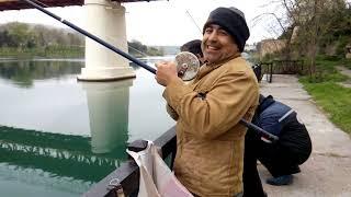 Рыбалка в азербайджане на куре