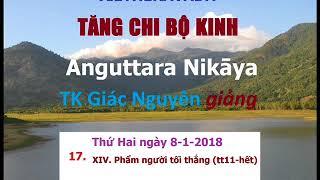 Kinh Tăng Chi _ 017_ TK Giác Nguyên Giảng