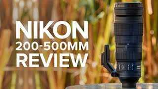 Review of the Nikon 200-500mm f/5.6 | Nature photography with the Nikon Z6