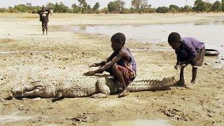 Classe nature au Burkina Faso - ZAPPING SAUVAGE