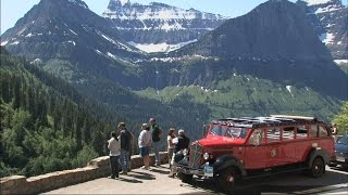 Red Bus Tour - Glacier National Park