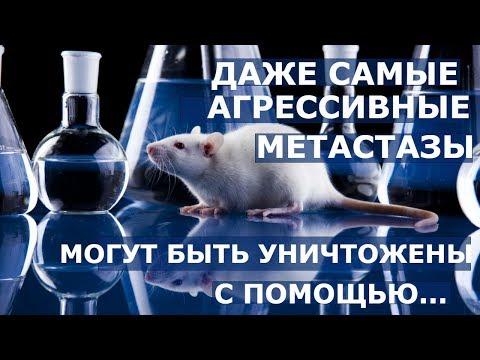 Народная медицина рецепты от аденомы простаты