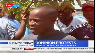 Farmers of Dominion Farm cry foul over unsettled arrears