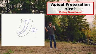 Apical Preparation Size Friday Questions
