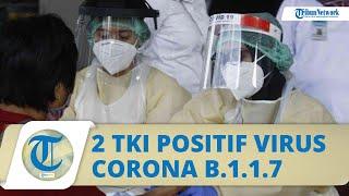 Kronologi 2 TKI Asal Karawang Terinfeksi Mutasi Virus Corona B.1.1.7, Terbang dari Arab Saudi