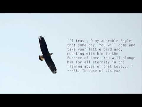 Soar On Eagle S Wings By Elaine Oswald Naijafy