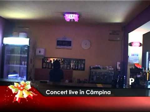 Concert live în Câmpina