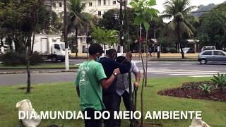 Santos planta mudas de ipê no Dia Mundial do Meio Ambiente