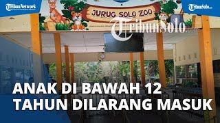 Kebun Binatang di Solo Masih Sepi, Manager Pemasaran TSTJ Ungkap Alasannya