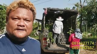 preview picture of video 'งานเกษตรแม่โจ้ 85 ปี ( ออกบูธ )'