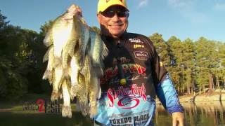 Find and Consistently Catch Crappie in Brush
