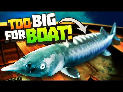 BIGGEST FISH EVER, TOO BIG FOR THE BOAT! - Catch & Release Gameplay - VR HTC Vive Pro