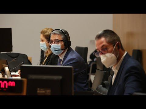 Pleno ordinario de la Diputación de Málaga. Noviembre 2020